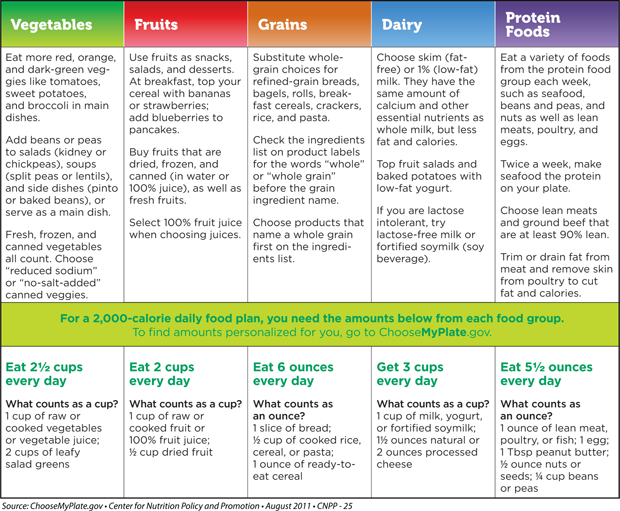 Free Worksheets myplate gov worksheet : Canon-MacPreschool - Food Model Calorie Count